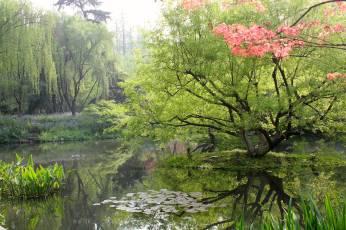 Gardens around West Lake